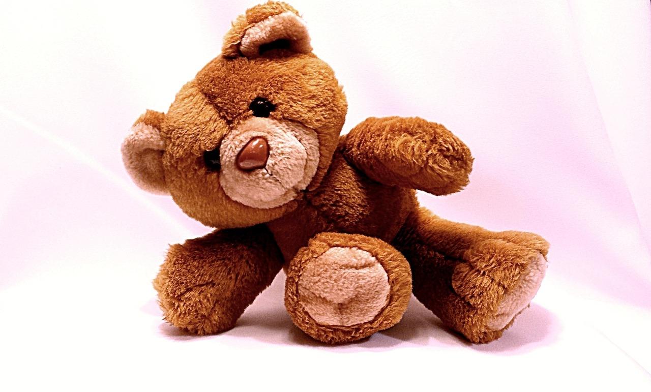 bear-678606_1280.jpg